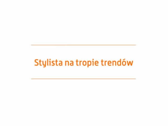 Allegro – Stylista na tropie trendów